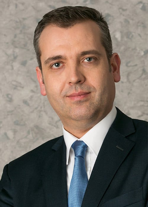 Svetoslav Papazov Steuerabteilung